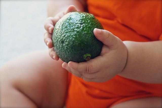 Bébé doit mangé des légume c'est important, il tiens ici un avocat
